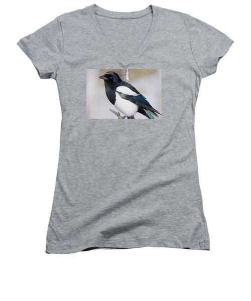 Black-billed Magpie Women's V-Neck T-Shirt (Junior Cut) by Eric Glaser