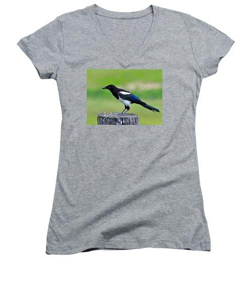 Black Billed Magpie Women's V-Neck T-Shirt (Junior Cut) by Karon Melillo DeVega
