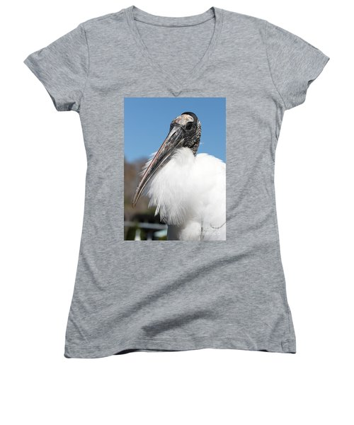 Fluffy Wood Stork Women's V-Neck T-Shirt (Junior Cut) by Carol Groenen