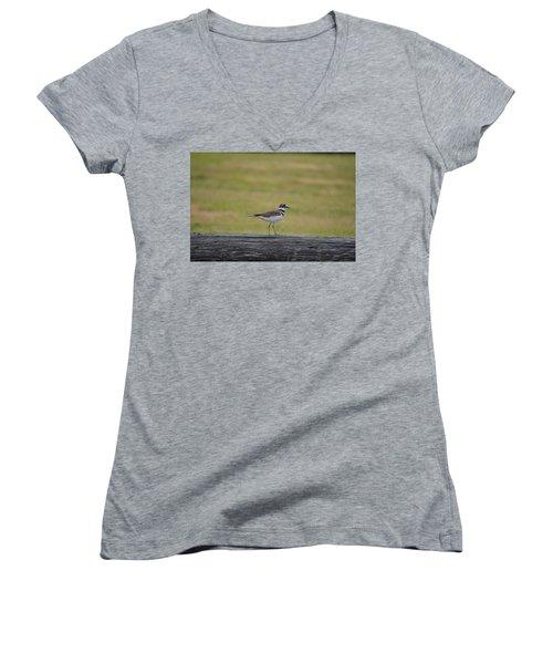 Killdeer Women's V-Neck T-Shirt (Junior Cut) by James Petersen
