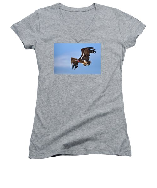 Lappetfaced Vulture Women's V-Neck T-Shirt (Junior Cut) by Johan Swanepoel