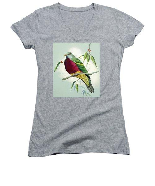 Magnificent Fruit Pigeon Women's V-Neck T-Shirt (Junior Cut) by Bert Illoss