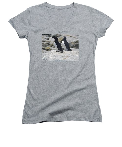 Razorbills 2 Women's V-Neck T-Shirt (Junior Cut) by James Petersen