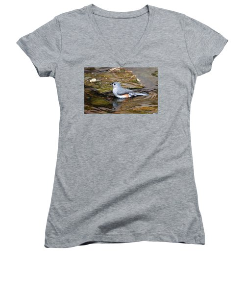 Tufted Titmouse In Pond II Women's V-Neck T-Shirt (Junior Cut) by Sandy Keeton