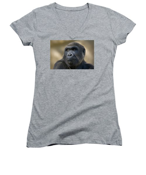 Western Lowland Gorilla Portrait Women's V-Neck T-Shirt (Junior Cut) by San Diego Zoo