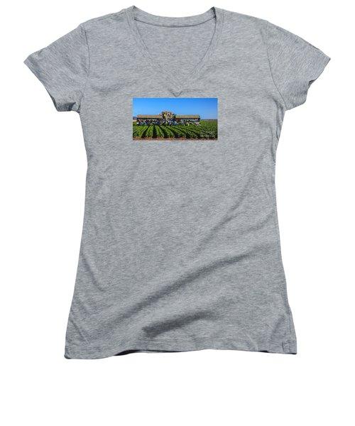 Winter Lettuce Harvest Women's V-Neck T-Shirt (Junior Cut) by Robert Bales