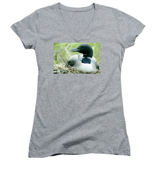 Common Loon, La Mauricie National Park Women's V-Neck T-Shirt (Junior Cut) by Philippe Henry