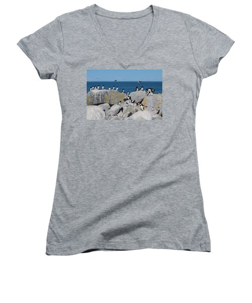Auk Island Women's V-Neck T-Shirt (Junior Cut) by Bruce J Robinson