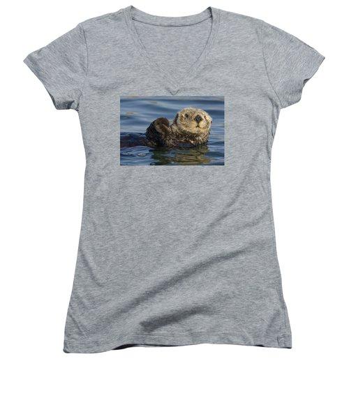 Sea Otter Monterey Bay California Women's V-Neck T-Shirt (Junior Cut) by Suzi Eszterhas