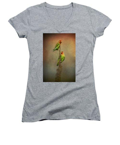 Up And Away We Go Women's V-Neck T-Shirt (Junior Cut) by Saija  Lehtonen
