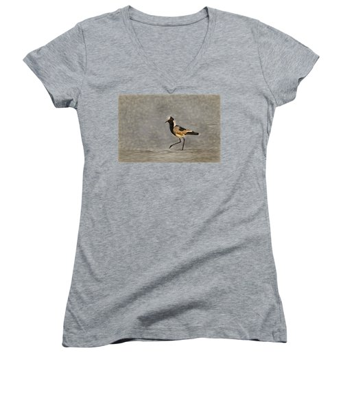 Black-winged Lapwing Art Women's V-Neck T-Shirt (Junior Cut) by Kay Brewer