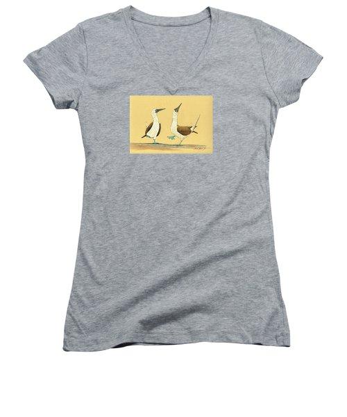 Blue Footed Boobies Women's V-Neck T-Shirt (Junior Cut) by Juan  Bosco