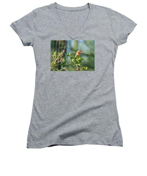 Lovely Little Lovebird  Women's V-Neck T-Shirt (Junior Cut) by Saija Lehtonen