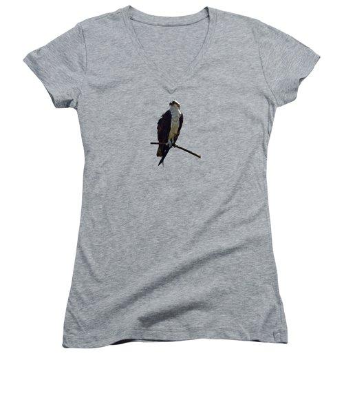 Osprey Women's V-Neck T-Shirt (Junior Cut) by Deborah Good