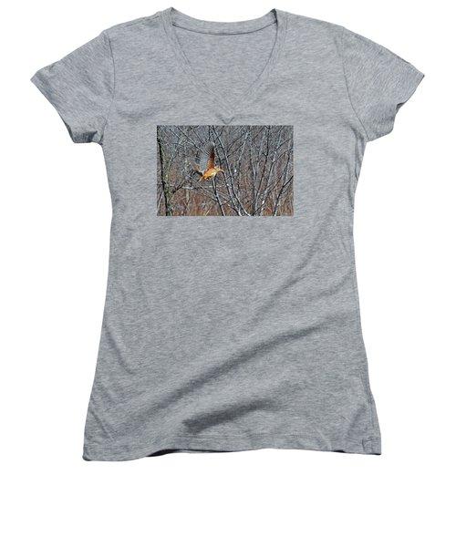 American Woodcock In Takeoff Flight Women's V-Neck T-Shirt (Junior Cut) by Asbed Iskedjian