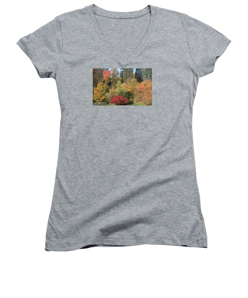 Women's V-Neck T-Shirt (Junior Cut) featuring the photograph Autumn In Baden Baden by Travel Pics