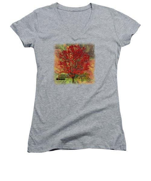Autumn Scenic 2 Women's V-Neck T-Shirt (Junior Cut) by John M Bailey