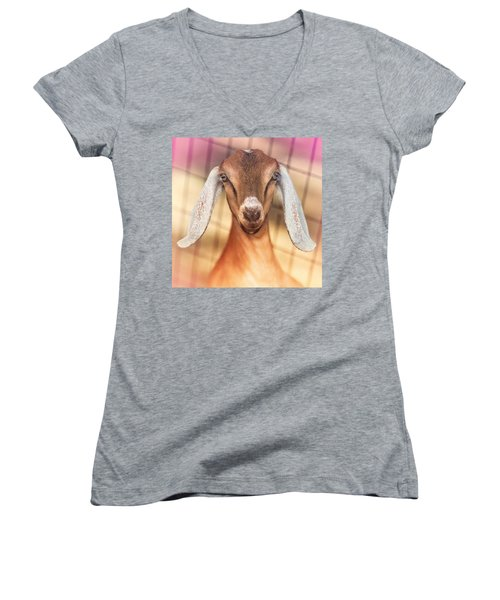 Beautiful Taffy Women's V-Neck T-Shirt (Junior Cut) by TC Morgan