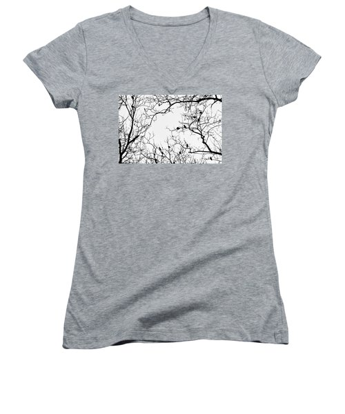 Branches And Birds Women's V-Neck T-Shirt (Junior Cut) by Sandy Taylor