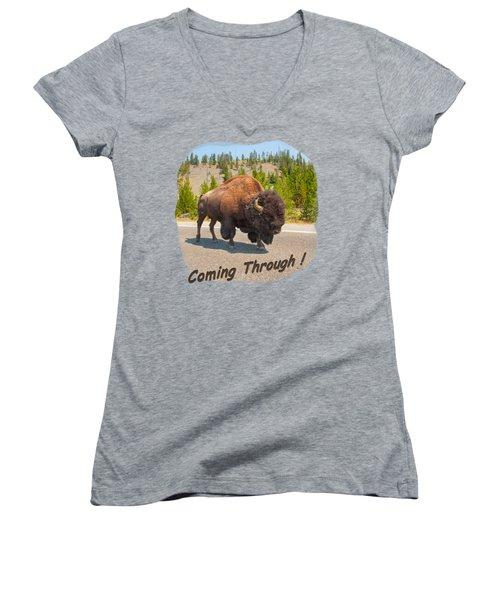 Buffalo Women's V-Neck T-Shirt (Junior Cut) by John M Bailey