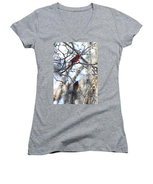 Cardinals In Mossy Tree Women's V-Neck T-Shirt (Junior Cut) by Carol Groenen