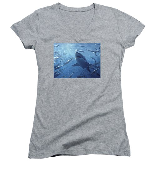 Great White Shark Carcharodon Women's V-Neck T-Shirt (Junior Cut) by Mike Parry
