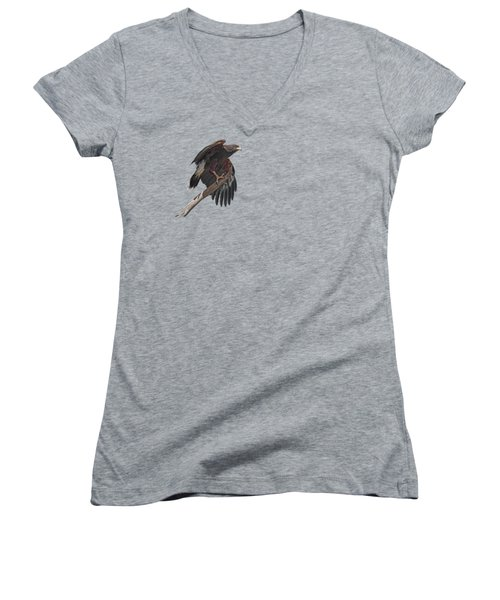 Harris Hawk - Transparent 2 Women's V-Neck T-Shirt (Junior Cut) by Nikolyn McDonald
