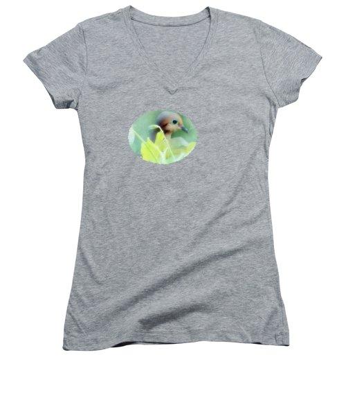 Hidden Nature Women's V-Neck T-Shirt (Junior Cut) by Anita Faye