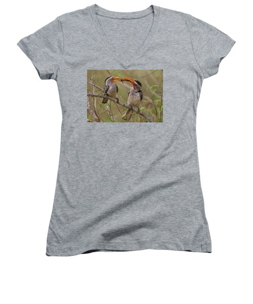 Hornbill Love Women's V-Neck T-Shirt (Junior Cut) by Bruce J Robinson