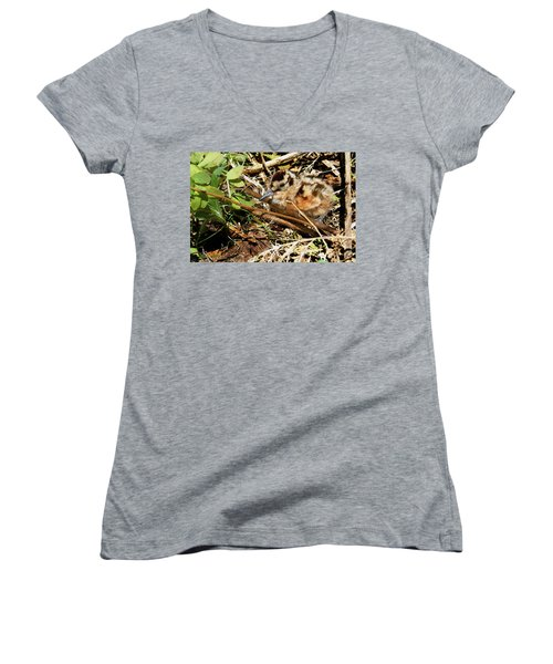 It's A Baby Woodcock Women's V-Neck T-Shirt (Junior Cut) by Asbed Iskedjian