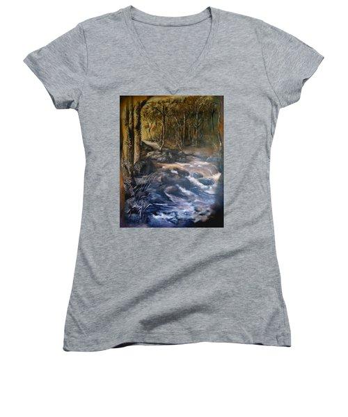 La Rance Women's V-Neck T-Shirt (Junior Cut) by Silk Alchemy