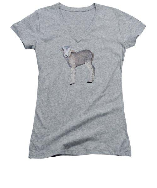 Lamb Women's V-Neck T-Shirt (Junior Cut) by Petra Stephens