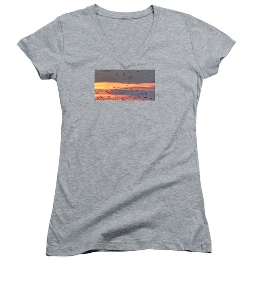 Lapwings At Sunset Women's V-Neck T-Shirt (Junior Cut) by Jeff Townsend