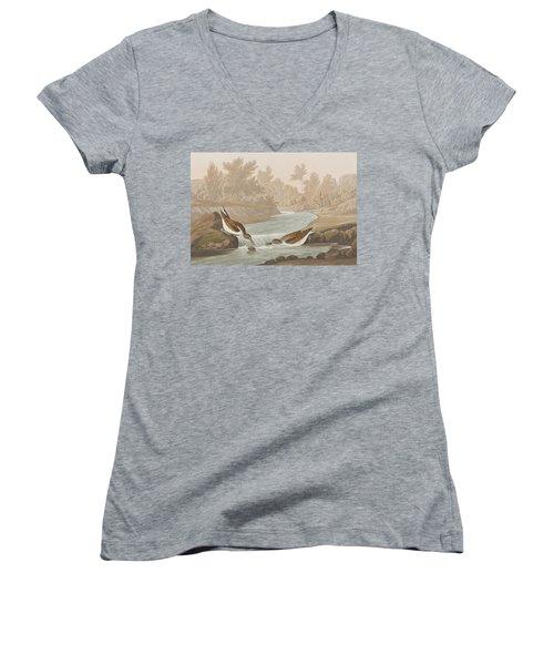 Little Sandpiper Women's V-Neck T-Shirt (Junior Cut) by John James Audubon
