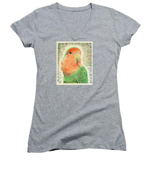 Lovebird Pilaf Women's V-Neck T-Shirt (Junior Cut) by Remrov