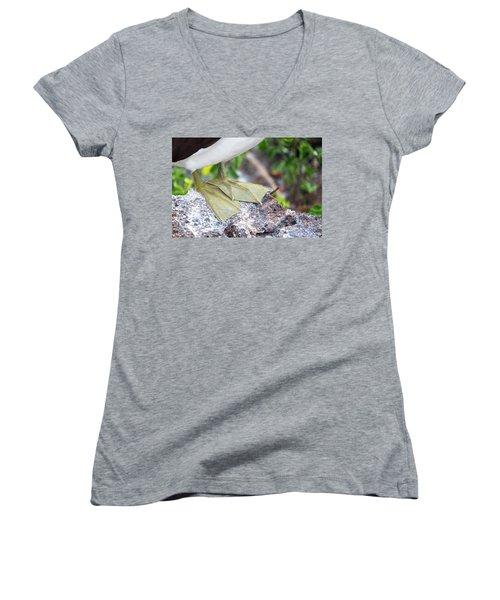 Nazca Booby Feet Women's V-Neck T-Shirt (Junior Cut) by Jess Kraft