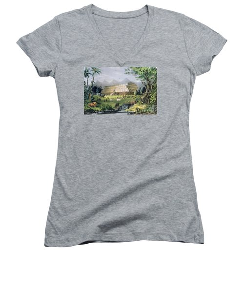 Noahs Ark Women's V-Neck T-Shirt (Junior Cut) by Currier and Ives