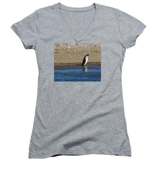 Penguin On The Beach Women's V-Neck T-Shirt (Junior Cut) by Sandy Taylor