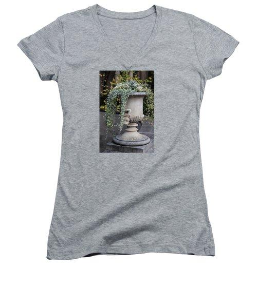 Penn State Flower Pot  Women's V-Neck T-Shirt (Junior Cut) by John McGraw