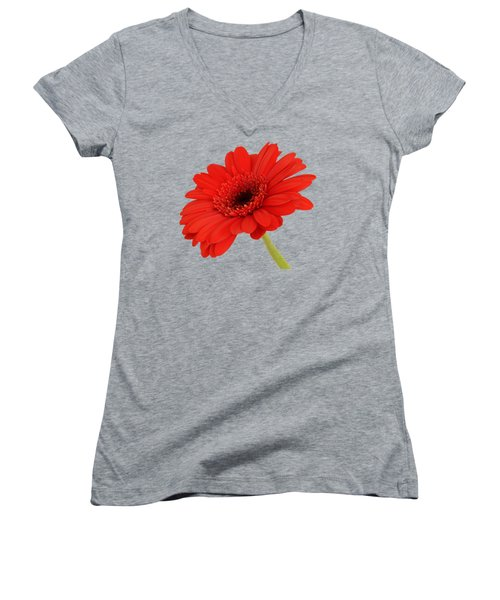 Red Gerbera Daisy 2 Women's V-Neck T-Shirt (Junior Cut) by Scott Carruthers