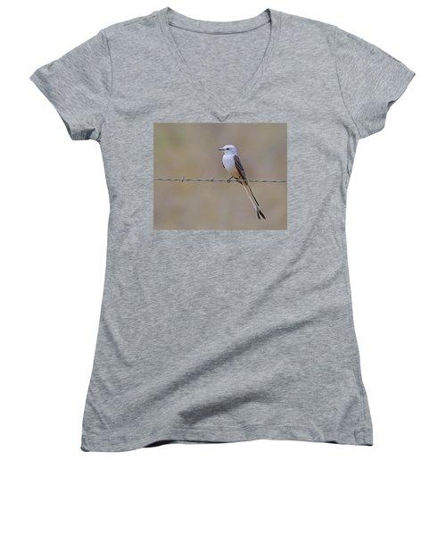 Scissor-tailed Flycatcher Women's V-Neck T-Shirt (Junior Cut) by Tony Beck
