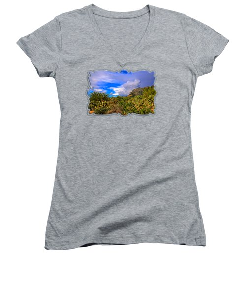 Sonoran Afternoon H11 Women's V-Neck T-Shirt (Junior Cut) by Mark Myhaver