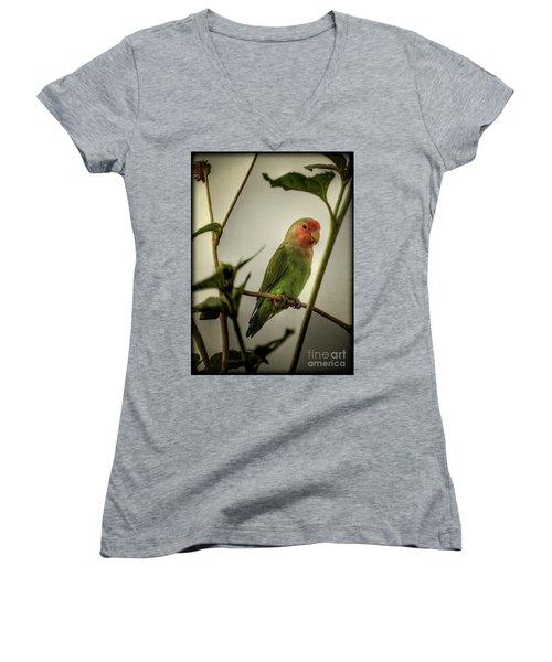The Lovebird  Women's V-Neck T-Shirt (Junior Cut) by Saija  Lehtonen