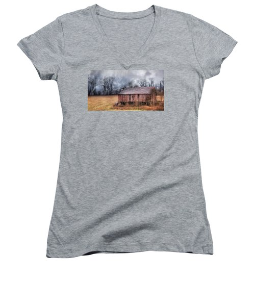 The Rural Curators Women's V-Neck T-Shirt (Junior Cut) by Lori Deiter