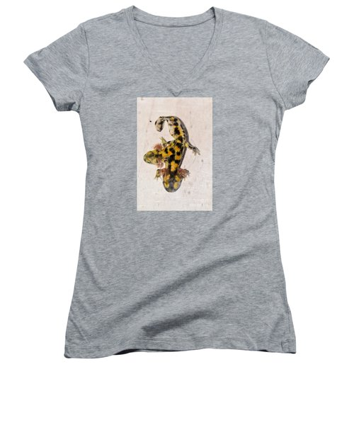 Two-headed Near Eastern Fire Salamande Women's V-Neck T-Shirt (Junior Cut) by Shay Levy