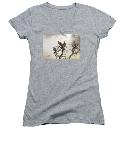 Vultures In A Dead Tree.  Women's V-Neck T-Shirt (Junior Cut) by Jane Rix