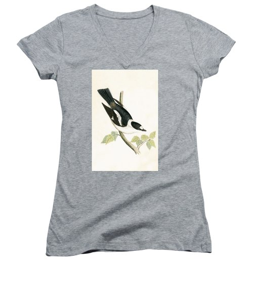 White Collared Flycatcher Women's V-Neck T-Shirt (Junior Cut) by English School