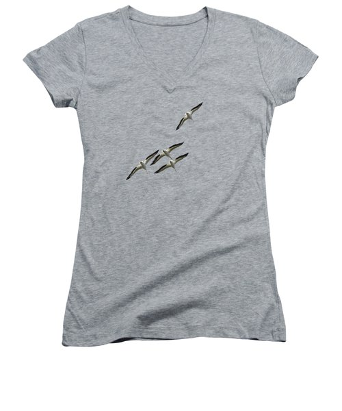 White Pelicans Transparency Women's V-Neck T-Shirt (Junior Cut) by Richard Goldman