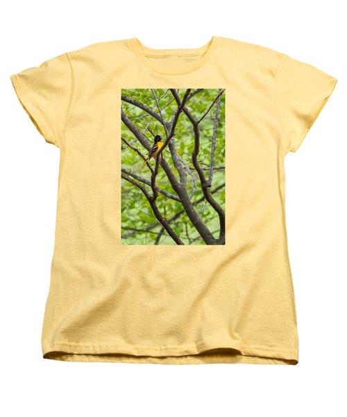 Baltimore Oriole Women's T-Shirt (Standard Cut) by Bill Wakeley