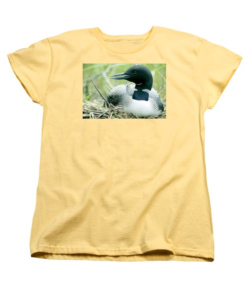 Common Loon, La Mauricie National Park Women's T-Shirt (Standard Cut) by Philippe Henry